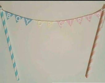 Gender Reveal Cake Topper Cake Bunting