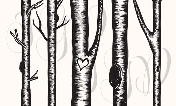 birch tree digital clip art hand drawn winter aspen rh etsy com clipart birch tree clipart birch tree