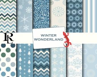 Winter Digital Paper Pack - Digital Background - Paper background -blue paper pack - wonderland paper scrapbooking - snowflake paper
