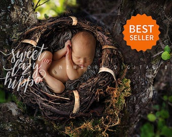 Newborn Digital Backdrop outdoors. Newborn nest background for baby boys. Nest on the tree outdoors. instant download. Hires jpg file.