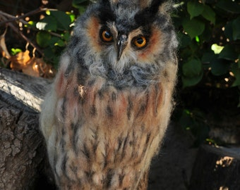 Needle felted  owl. Long-eared Owl. Made to order