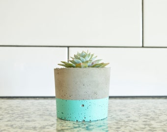 Concrete Succulent Planter, Small, Concrete and Teal, Modern & Trendy