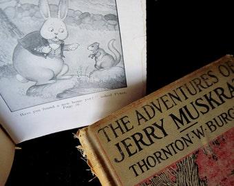 Burgess Bedtime Books, Bedtime Books, Thornton Burgess, Reddy Fox, Bedtime Story Books, Burgess Bedtime, Animal Story Books, Nursery Books
