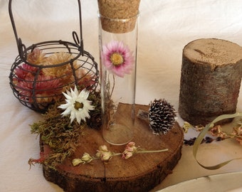 Dried flowers, wedding guest gifts test tubes