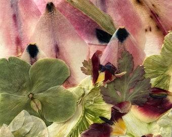 "Flower 14.18 Giclee Print 12"" x 18"""