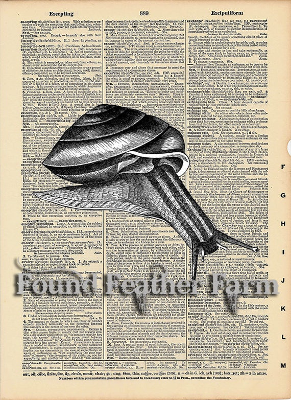 """Vintage Antique Dictionary Page with Antique Print """"Black and White Snail"""""""