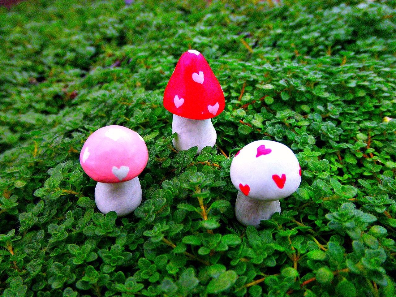 Fairy Garden Valentine\'s Day Heart Mini Mushrooms
