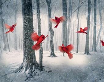 "Cardinals Digital, 1 Panel, 28"" x 44"", Hoffman Fabrics, Digitally Printed Panel, Call of the Wild Line, Cardinals, Trees, Snow, In Flight"