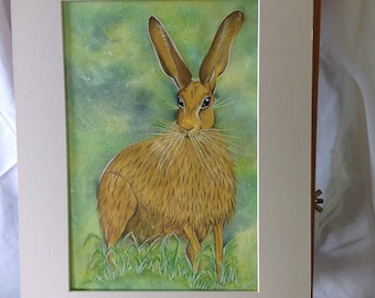 Hare,Lepus Timidus, Brown Hare, Original Painting, Mixed Media