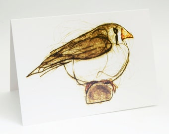 Finch V, Greeting Card, Bird Art Card, Bridget Farmer, Bird Art, Zebra Finch