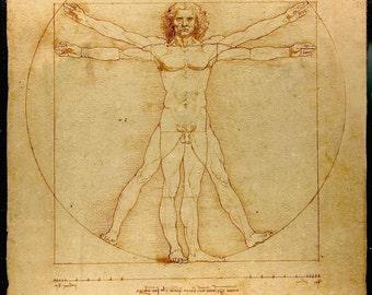 Vitruvian Man by Leonardo da Vinci, in various sizes, Giclee Canvas Print