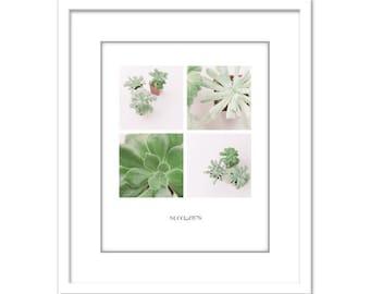 Poster Print - Succulent Photo - Houseplant Photo - Minimalist Photo - Poster - Gift - Fine Art Photography Print - Green White Modern Decor