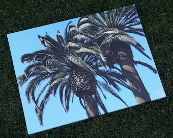 Palm Tree Canvas Picture 18 x 24
