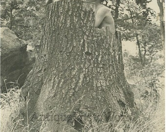 Two boys in tree stump vintage art photo by B Baron