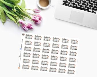 BALANCE CHECKBOOK Planner Stickers  CAM00261
