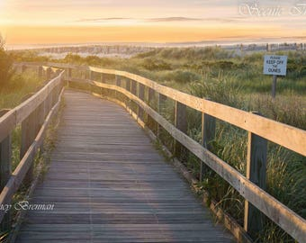 Pathway to Fire Island Lighthouse at Sunrise