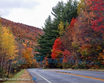 Fall Foliage in Vermont, along the Misty Highway
