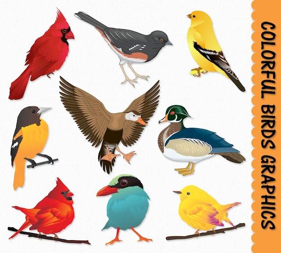 birds clip art graphics bird clipart cardinal duck sparrow rh etsy com sparrow clip art free clipart sparrow bird