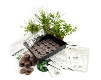 Medicinal Indoor Herb Garden Starter Kit - Grow St. Johnswort, Burdock, Fever Few, Cayenne, Peppermint & More - Great Gift Idea