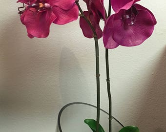 Orchids, Double Phalaenopsis Orchid with Vase Arrangement.