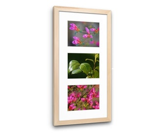 Flowers and Leave Set of 3 Prints