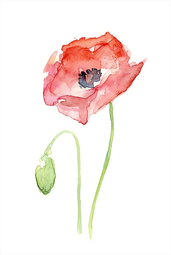 Red poppy flower art print of watercolor painting plants red poppy flower art print of watercolor painting plants nature poppies mightylinksfo Image collections
