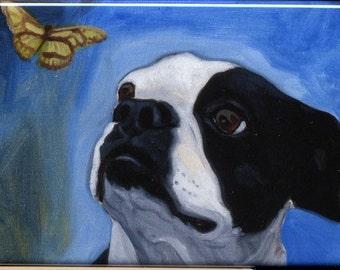 Boston Terrier Butterfly dog art magnet, Boston terrier gift, boston terrier refrigerator magnet