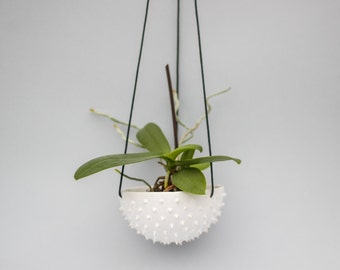 50% discount-Ceramic spiky white hanging planter/ air planter/ succulent planter/ hanging flower pot/ white pot/ ceramic flower pot/ christ