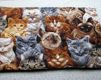 cats kittens kitties pet food mat table mat center piece what ever you can think of