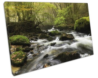 Misty morning at Golitha Falls on Bodmin Moor in Cornwall Ready to Hang X1005