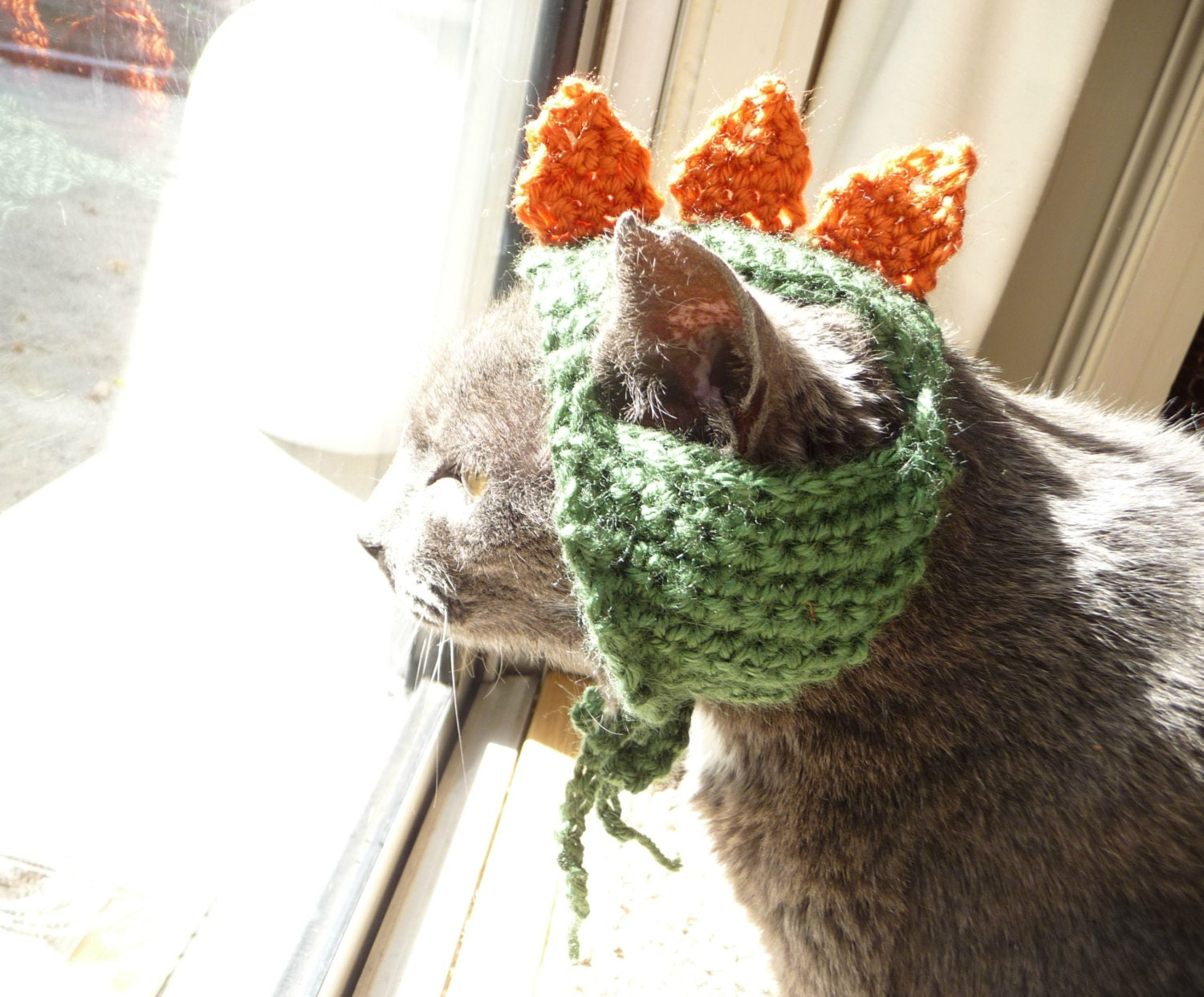 Cat Costume for a Cat Crochet Pattern Dinosaur Dino Pet Costume for ...