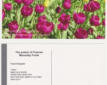 Printed MATT/GLOSS Poetry Postcards, MIXED set of 5, original photos & poetry by Frances Macaulay Forde