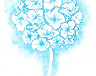 Blue and White Chrysanthemum, Wedding flower, Painting Print