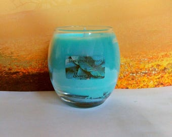 Eucalyptus, handmade, scented candle, aromatherapy, soy candle, large , , eucalyptus scent, gift for her - him, Heaven Senses