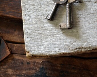 Key Collector Necklace - Antique Skeleton Key Necklace - Double Skeleton Key Necklace - Keys To My Heart - Key Necklace - Mens Key Necklace