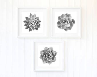 Succulent print, black and white succulent leaves, spring trends for 2018, succulents print, monochrome trends 2018, large living room decor