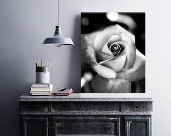 BLACK WHITE PHOTOGRAPH, Contemporary Art, Rose Picture, Printable Wall Art, Digital Download, Flower Photograph, Black White Print
