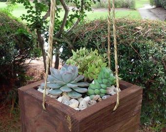 Beautiful hanging wood succulent planter