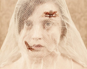 The Little Ones Get Caught FREE SHIPPING Surreal photo print Creepy Art Womans face Bugs trapped in net Portrait Cream Insects Wings Eyes