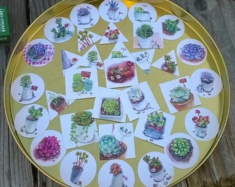 38 stickers different cacti, triangles, round, square theme