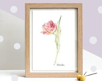 Tulip Botanical Art,  Original Framed Pencil Drawing, Original Art, Mother's Day Gift, Floral Illustration, Flower Drawing