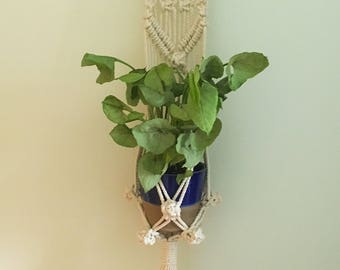 Simple Single Macrame Wall Plant Hanger on Natural Driftwood