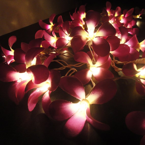 35 Purple Frangipani String Lights Flower Fairy Lights Bedroom