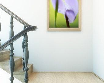 Cyclamen Abstract Art, Spring Decor, Fine Art Photography, Vertical Wall Art, Flower Print