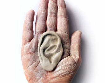 Human ear earring display photo prop