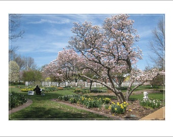 Early Spring View, Missouri Botanical Garden