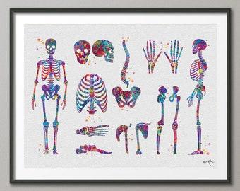 Skeletal System Watercolor Print Human Body Anatomy Art Medical Art Medicine Skull Art Wall Hanging Graduation Gift Clinic Decor Gift-1025