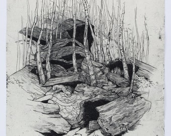 """Title: """"Surface"""" Copperplate intaglio limited edition etching on 300gsm paper. Forest landscape with boulders, stones, line drawing."""