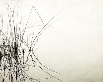 "Black and white photography - lake reed grasses - minimal wall art - living room decor - gray wall art - water reflection 12x12 ""Palindrome"""