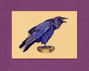 ATC Raven Bird  Art  2.5 x 3.5 inches